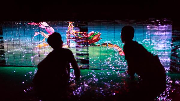 Nghệ thuật múa rối nước